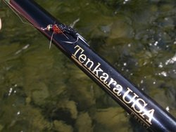 Tenkara_and_Black_Stonefly